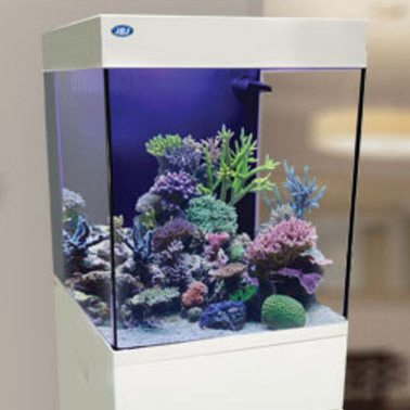 Jbj 20 gallon cubey midsize white cn 20 w for Nano cube fish tank
