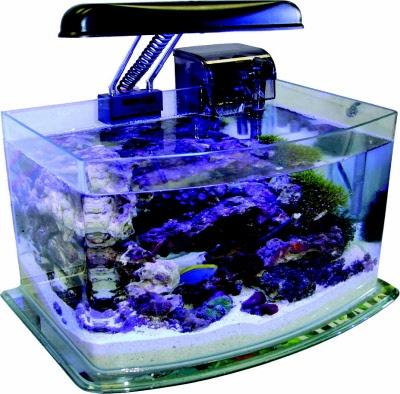 49 jbj picotope 3 gallon aquarium kit for Nano cube fish tank