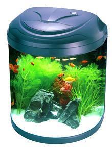 Nano 180 Aquarium Tank Jbjnanocube Com